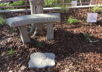Shaded seating within the native garden invites students to rest in the shade.